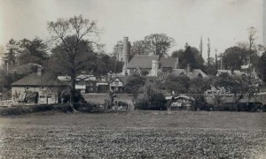 Cherry Tree Cottages, taken from where Green View Avenue is today.