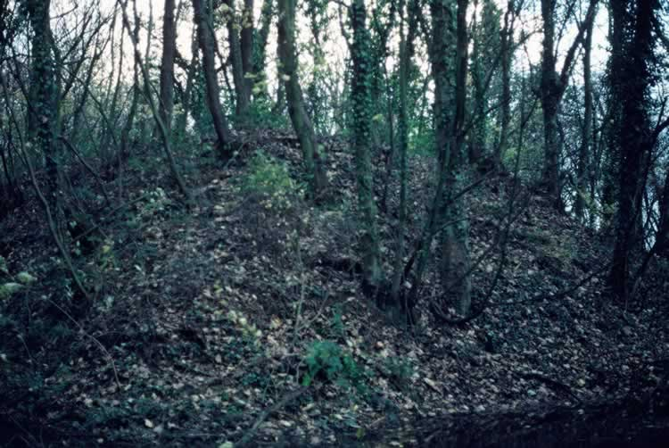Recent photograph of woods showing explosion proof earthwork remains, with some remains of machinery inside, sited away from main workings.