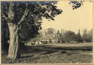 Village Green taken from southwest corner towards St Mary's Church