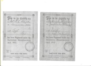 1915 National Registration Act card: for Emily and Frederick Fitzjohn.